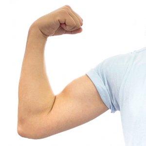 筋肉の3つの動き方
