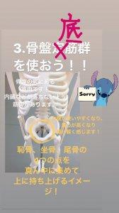 インナーマッスル 3.「骨盤底筋群」